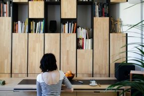 Библиотека bib76876 по индивидуальным размерам на заказ, материалы из лдсп мдф расцветка — бежевый черный в интернет магазине mebelblok.ru